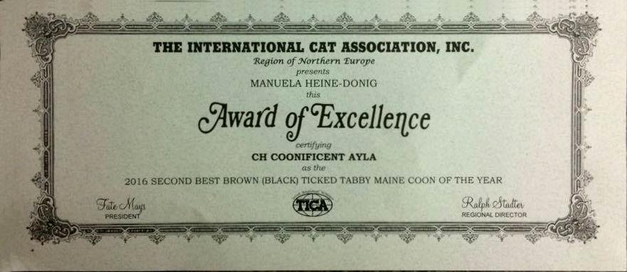 ayla_award_of_exellence