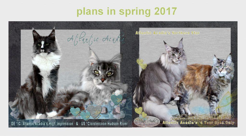 plans-2017