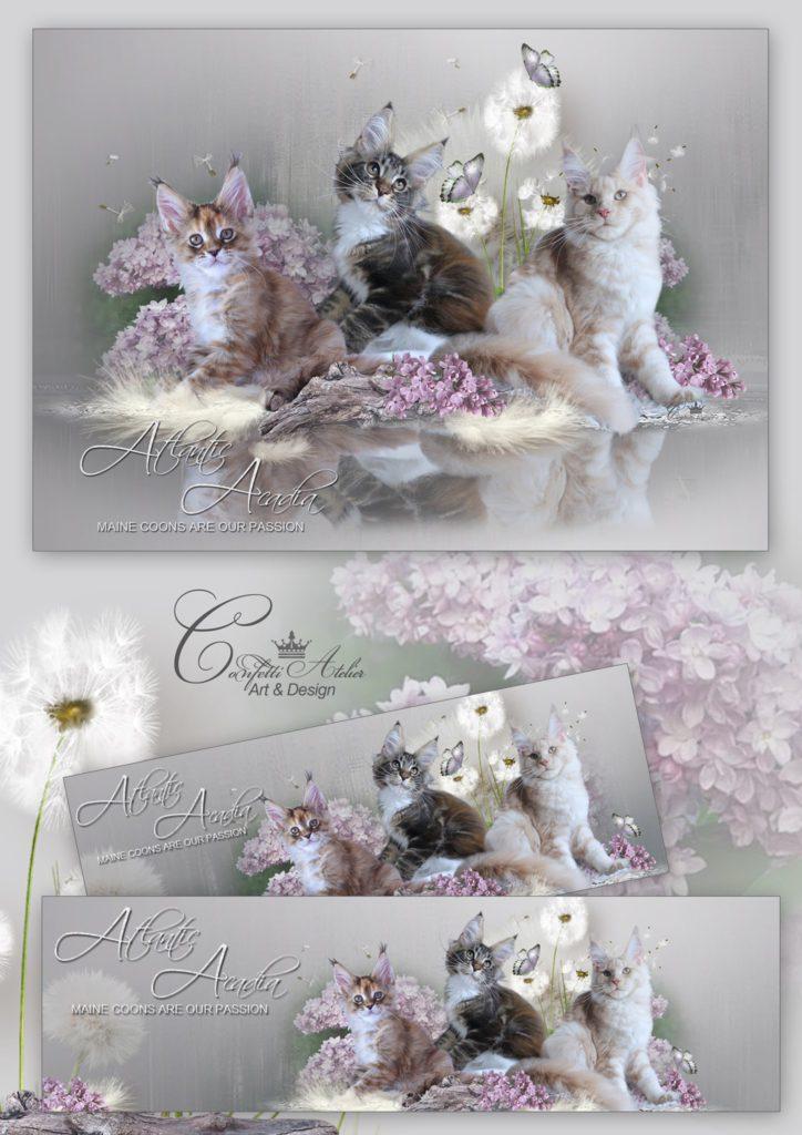 Confetti collage 04_2020